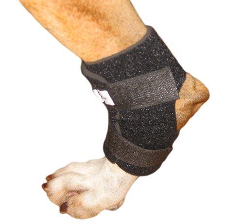 Walkin' Hock Wrap for Dogs Rear Leg Canine