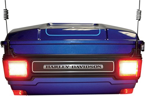 Fox Body Led Tail Lights in US - 4