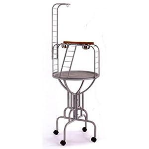 NEW Elegant Design Wrought Iron Parrot Bird Play Gym Ground Stand With Metal Pan & LadderBlack Vein 105