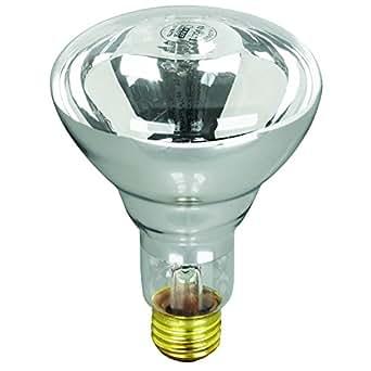Feit electric 100r20 s 12 100 watt 12 volt pool spa short - Swimming pool light bulbs halogen ...