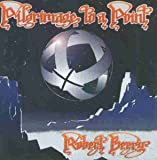 Pilgrimage to a Point by Robert Berry
