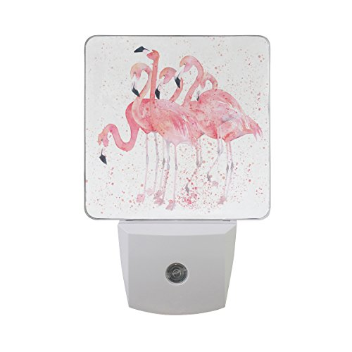 Naanle Set of 2 Watercolor Pink Flamingos Painting Splash Image Auto Sensor LED Dusk to Dawn Night Light Plug in Indoor for Adults