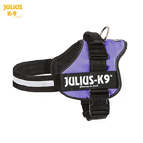 Julius-K9 Powerharness, 3, Purple by K9-powerharness