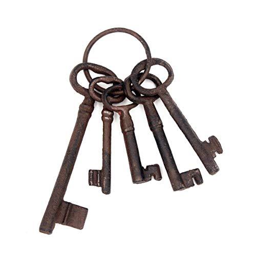 Funly mee Pirate Treasure Chest Keys Set,Skeleton Key Ring Antique Style,Rustic Bronze Cast Iron Skeleton Key Wall Decor, Costume Prop (5 Keys) -