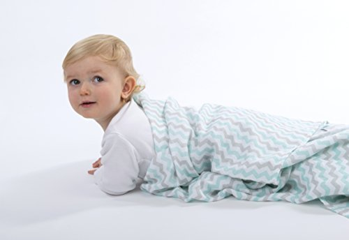 Muslin Swaddle Blankets Pack swaddling product image