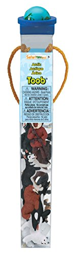 Safari Ltd Arctic TOOB With 10 Fun Figurines, Including A Harp Seal, Husky, Caribou, Arctic Rabbit, Killer Whale, Walrus, Arctic Fox, Beluga Whale, Igloo, And Polar Bear - For Ages 3 and Up (Action Figurine)