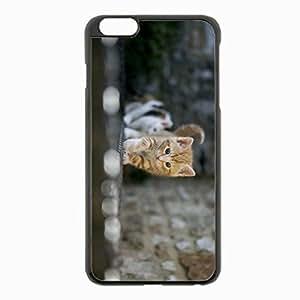 iPhone 6 Plus Black Hardshell Case 5.5inch - kitten blur light Desin Images Protector Back Cover