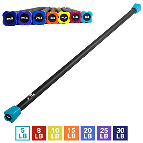 Weighted Workout Bar by