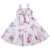 Best Baby Springs - Flofallzique Easter Dress for Baby Girls Spring Floral Review