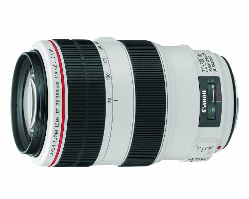 Canon Ef 70-300mm F4-5.6l Is Usm Ud Telephoto Zoom Lens For Canon Eos Slr Cameras