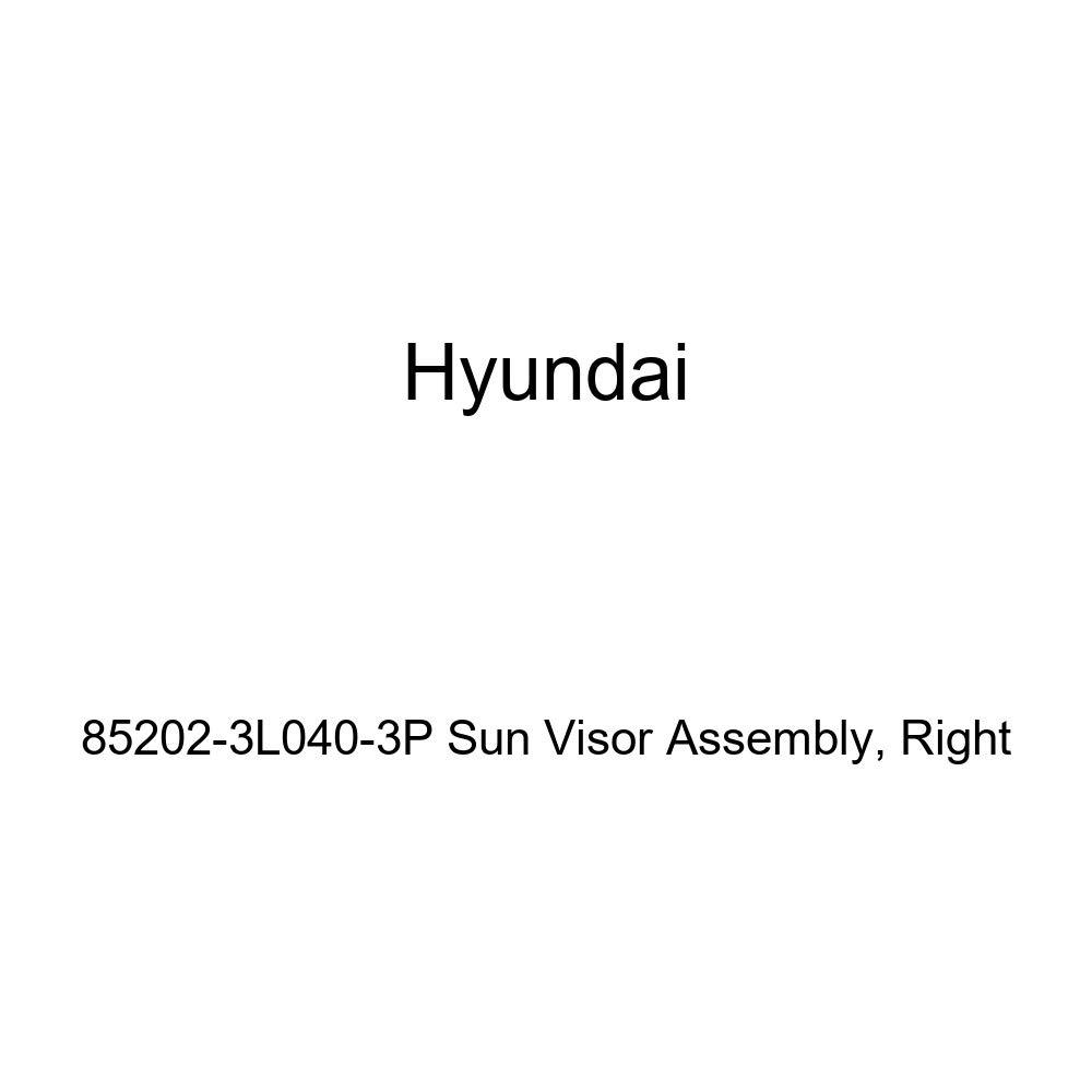 Right Genuine Hyundai 85202-3L040-3P Sun Visor Assembly