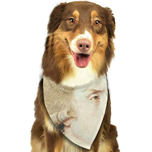 FRTSFLEE Dog Bandana USA Founding Father Thomas Jefferson Scarves Accessories Decoration for Pet Cats and Puppies]()