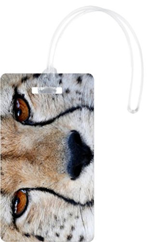 Cheetah Wild Cat Eyes Close-Up Design Flexi Luggage Tags - Premium Quality Plastic ID Card Tags - Great for Travel (Where Can I Buy Cat Eye Contacts)