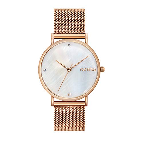 RumbaTime Women's 'Lafayette' Rose Gold Plated Stainless Steel Mesh Bracelet Casual Watch (Model: -