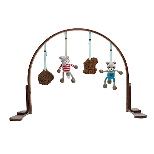 [Finn + Emma Organic Cotton Baby Girl Wood Play Gym - Flower Light (Discontinued by Manufacturer)] (Natural Jungle Gym)