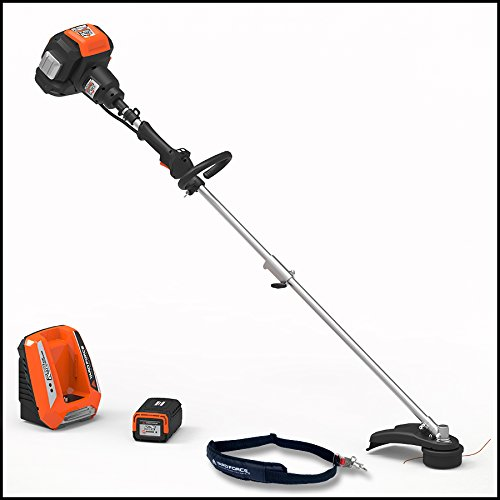 "Yard Force YF120vRX Lithium-Ion 18"" Line Trimmer - COMPLETE with Battery and Fast Charger included by YardForce"