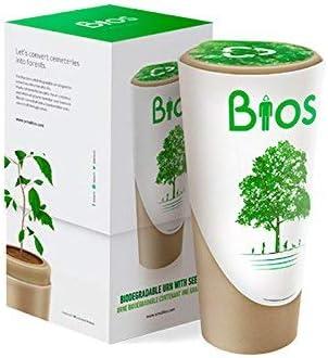 Love Forever Urna para Cenizas Biodegradable Que se Convierte en ...