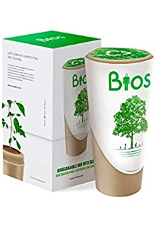 Urna biodegradable para Cenizas Bios. De las cenizas Crece un ...