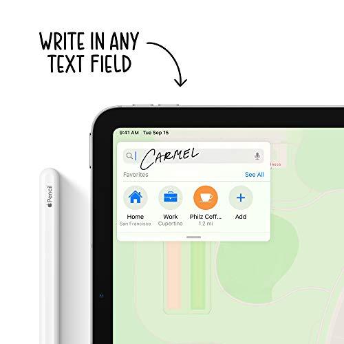 New Apple iPadAir (10.9-inch, Wi-Fi + Cellular, 256GB) - Sky Blue (Latest Model, 4th Generation)