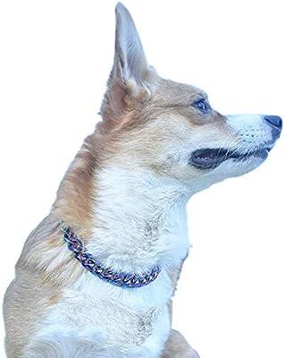 DALEI Collar de Cadena de estrangulador de Perro de Acero ...