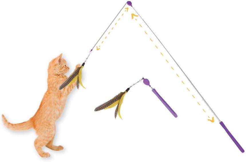 Jackson Galaxy Air Prey Cat Wand Cat Toy : Pet Supplies