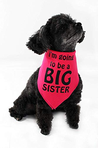 Product image of Midlee I'm Going to be a Big Sister Dog Bandana (Large)