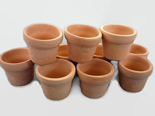 - Unbranded 10 Dollhouse Miniature Terracotta Flower Pots