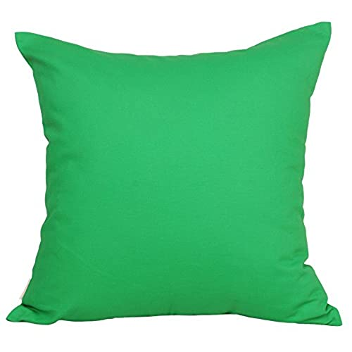 bright throw pillow amazon com