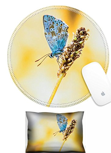 Luxlady Mouse Wrist Rest and Round Mousepad Set, 2pc IMAGE: 34283076 Blue Gossamer Winged Butterfly on a stipe - On Gossamer Set