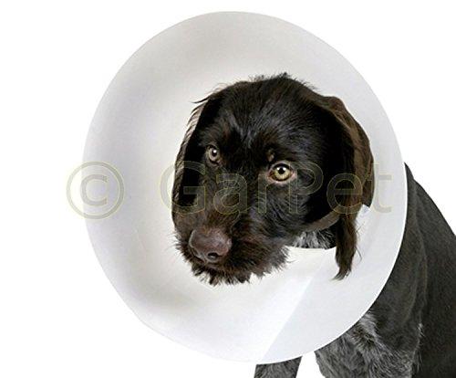 Hunde Katzen Schutzkragen Halskrause S 10 cm