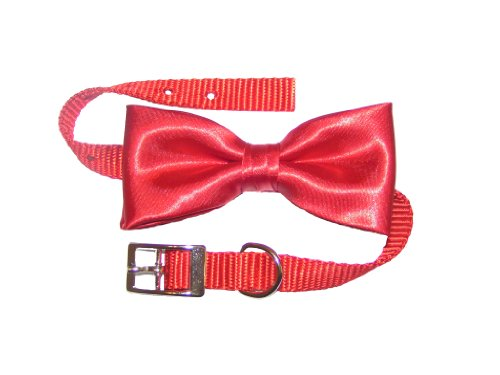 Dog Collar with Bow Tie, Red (12″ x 5/8″), My Pet Supplies