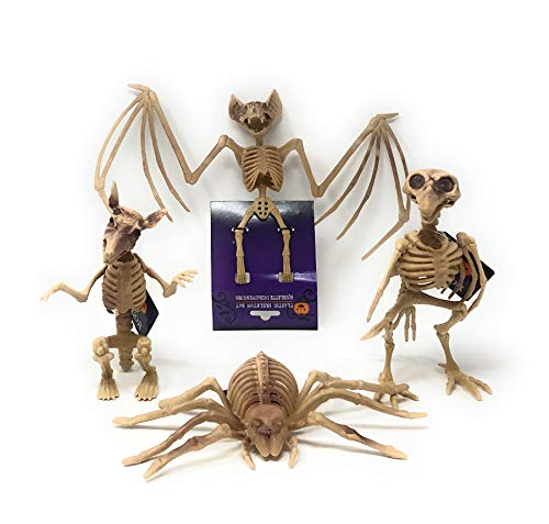 Halloween Bundle of 4 Spooky Skeleton Decorations, Includes 1 Skeleton Bat, 1 Skeleton Rat, 1 Skeleton Bird, and 1 Skeleton Spider