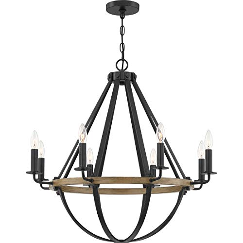 Quoizel BRL5008EK Bartlett Modern Teardrop Silhouette Chandelier, 8-Light, 480 Watts, Earth Black (29