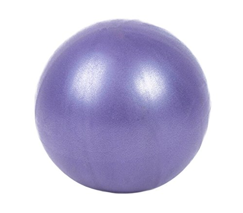 Mini Fitness Ball 9 Inch Physical Therapy Abdominal Workouts Yoga Shoulder and Core Training Small Exercise Ball (purple)