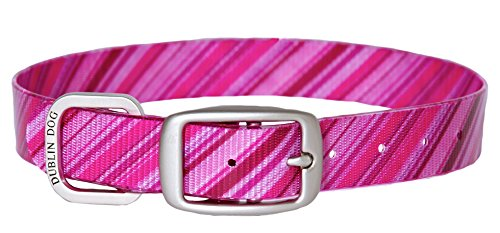 Dublin Dog Koa Collection Oxford 12.5 by 17-Inch Dog Collar, Medium, Raspberry Sorbet