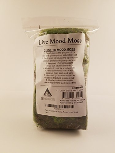 EZ-Botanicals Fresh Mood Moss Perfect for Terrariums and Bonsai