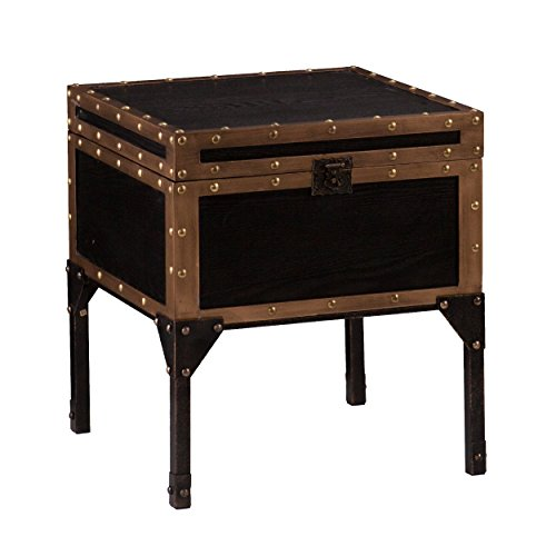 Drifton Travel Storage Trunk End Table - Enclosed Space & Display - Antique Black Finish w/ Bronze Accents