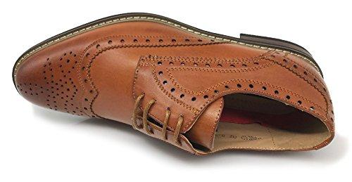 Enzo Romeo Conrad2 Hommes Italie Moderne Moderne Oxford Wingtip Lacer Les Chaussures Habillées (10.5, Marron)