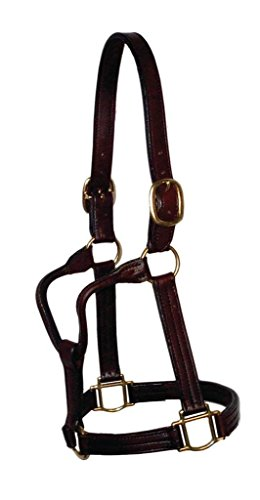 Berlin Custom Leather TB8 Throat Latch Fixed Halter, Large Horse