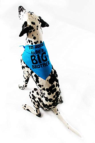 Midlee I'm Going to be a Big Brother Dog Bandana (Small)