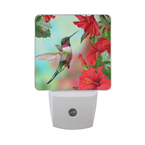 JOYPRINT Led Night Light Spring Floral Flower Hummingbird, Auto Senor Dusk to Dawn Night Light Plug in for Kids Baby Girls Boys Adults Room
