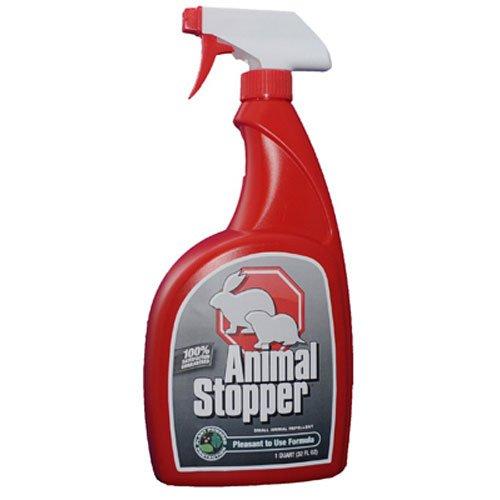 Rabbit Stopper (Messina Wildlife Management AS-U-016-6    RTU Animal Stopper with Trigger Sprayer, 32 oz)