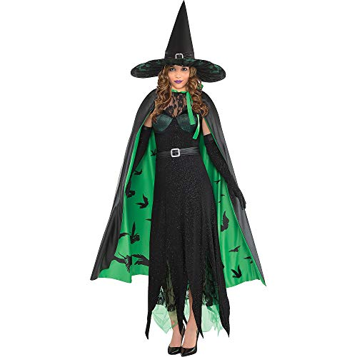 SUIT YOURSELF The Wizard of Oz Wicked Witch Costume for Women, Size Large, Includes Dress, Cape, Gloves, and Hat]()