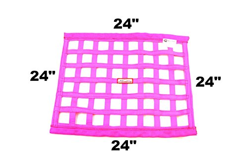 (Racerdirect.net SFI 27.1 Square Ribbon Safety Window Net 24