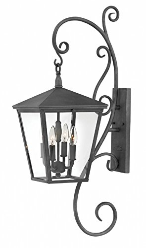 - Hinkley 1436DZ Transitional Four Light Outdoor Wall Mount from Trellis collection in Bronze/Darkfinish,