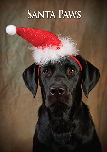 Labrador Dog Christmas Card. Large A5 Seasonal Greeting Card with Scarlet Envelope. Perfect for Dog Lovers