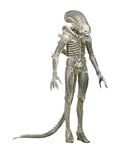 NECA Aliens Series 7 Concept 79' Action Figure (7