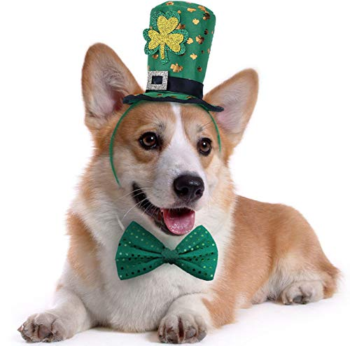 St Patricks Day Dog Costume