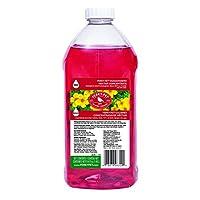 Concentrado de néctar de colibrí Perky-Pet 255, 64 oz, Rojo
