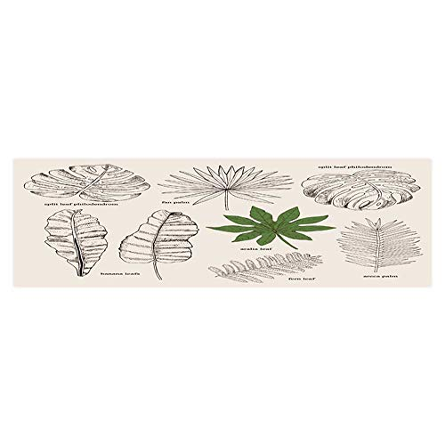Dragonhome Background Decoration Set Collection with Tropical Leafs in Sketch Style Design for Invitation Home Decoration L23.6 x H11.8